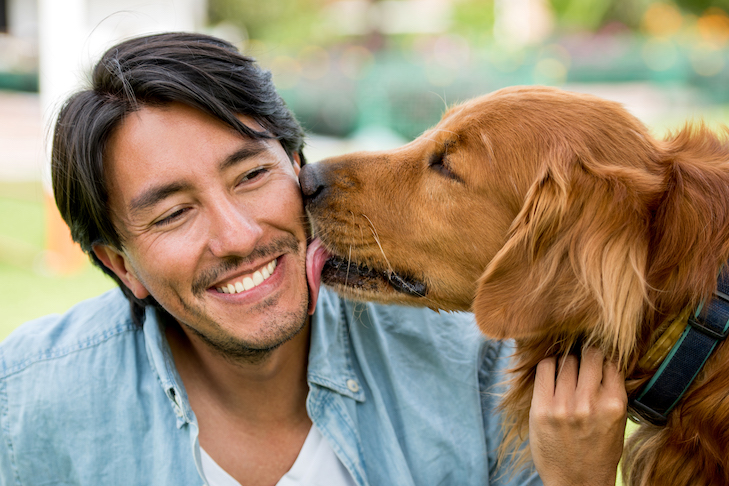 THE QUICK-START GUIDE TO YOUR NEW DOG: PART ONE – THE FIRST HOUR